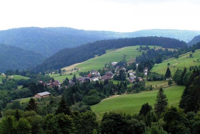 Шварцвальд лес Германии