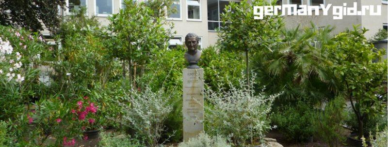 ботанический сад Геттингена