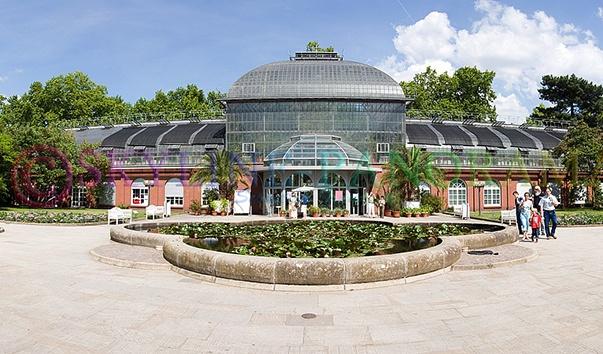 Ботанический сад Пальменгартен