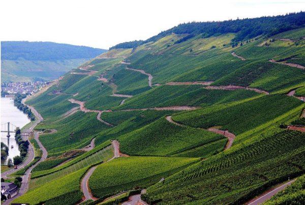 Виноградники долины Мозель в Германии