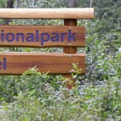 Айфель — немецкий национальный парк